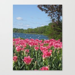 Flowers by the Lake!  Canvas Print