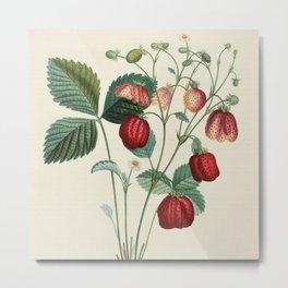 Strawberry Metal Print