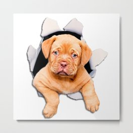 Puppy escaping from the hole Metal Print