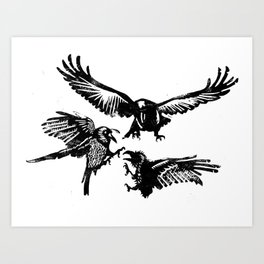 Crow Parliament Art Print