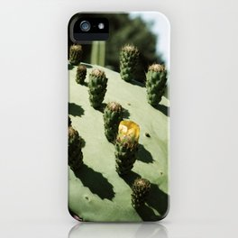 Cactus in Mid City with Small Yellow Flower  iPhone Case
