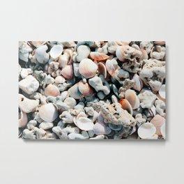 Seashells Metal Print