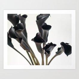 Dark Flowers, Light Background Art Print