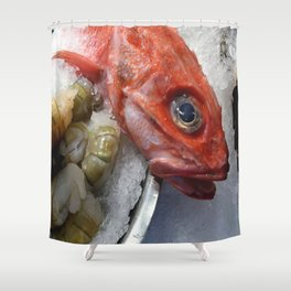 Red Fish Shrimp Market Shower Curtain