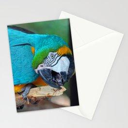 Chester V Stationery Cards