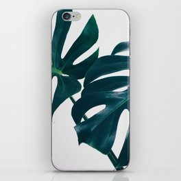 Monstera Minimal iPhone Skin