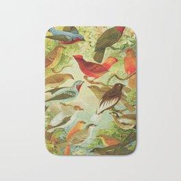 Amazonian Birds by Göldi & Emil August Belem Brazil Colorful Tropical Birds Scientific Illustration Bath Mat