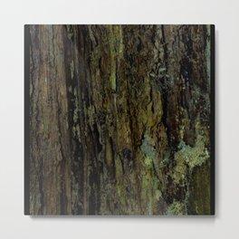 Wood Rot Metal Print