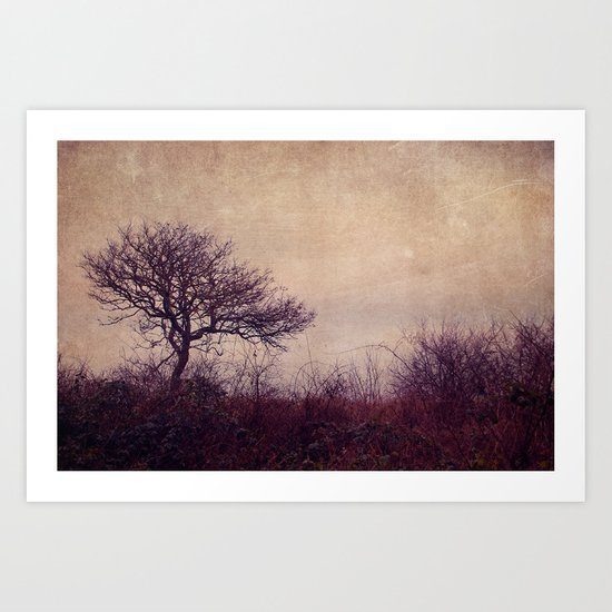 one winterday Art Print