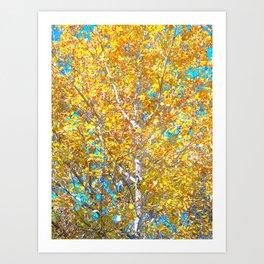 Sunlight in the Tree Art Print