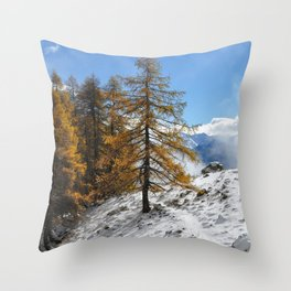The Confluence Of The Seasons Throw Pillow