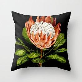 protea watercolor black Throw Pillow