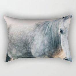 Seeing Rectangular Pillow