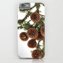 (Spruce or Fir) Cones iPhone Case