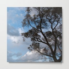On Winds of Evening Metal Print