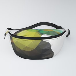 Toucan Fanny Pack