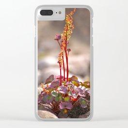 Wildflower between stones scandi landscape Clear iPhone Case