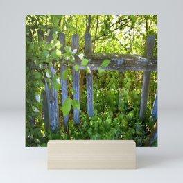 Rickety Fence Mini Art Print