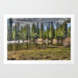 Reflecting Pond at Carson Spur, Amador County CA Art Print