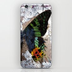 Sunset Moth Wing Abstract iPhone & iPod Skin