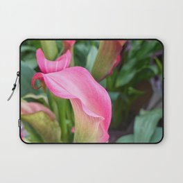 pink colored calla lily in the garden Laptop Sleeve