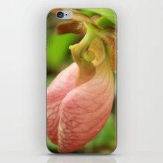 Naturally Fashionable iPhone & iPod Skin