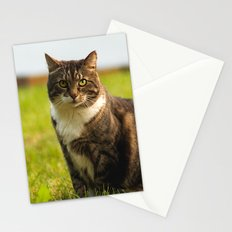 charlie the cat Stationery Cards