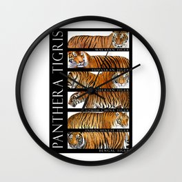 Tiger of Asia Wall Clock