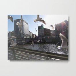 Dublin City Seagulls (Liffey) Metal Print