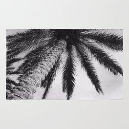 Florida Palm Tree Rug