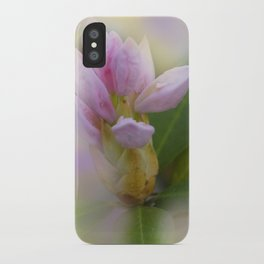 the beauty of a summerday -37- iPhone Case