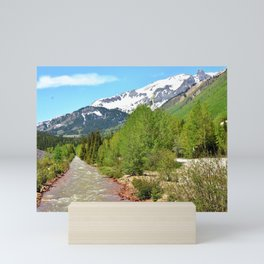 Red Mountain Creek at Ironton Mini Art Print