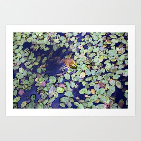 Mr. Frog Art Print