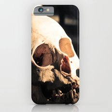 Skull - Mint in Box iPhone 6s Slim Case