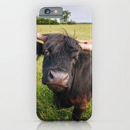Highland Cow - Head Tilt iPhone Case