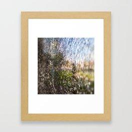 crack Framed Art Print