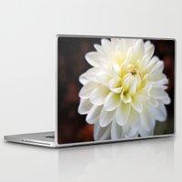 dahlia Laptop & iPad Skins featuring Dahlia by Elizabeth Boyajian