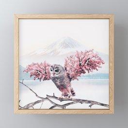 Sakura Owl Framed Mini Art Print