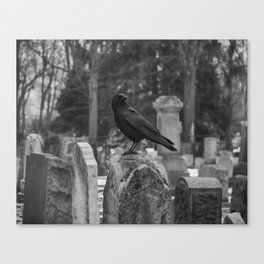 Crow In Shades Of Stone Canvas Print