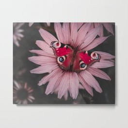 Butterfy Metal Print
