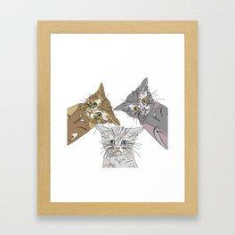 Triple Kitties - Three's Company Framed Art Print