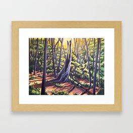 Last of the Light Framed Art Print