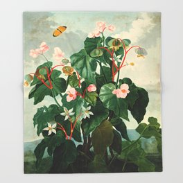 Pink Floral The Oblique-Leaved Begonias : Temple of Flora Throw Blanket