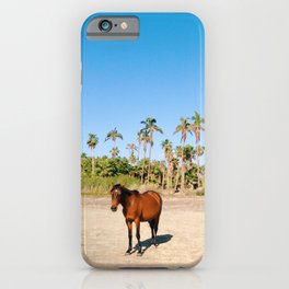 Wild horse on a beach with palm trees iPhone Case