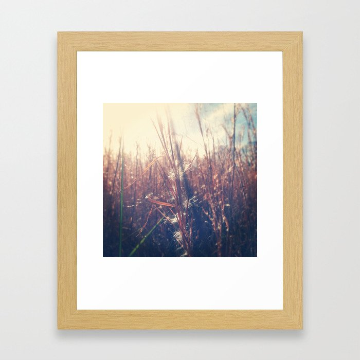 Clothed In Beauty.  Framed Art Print
