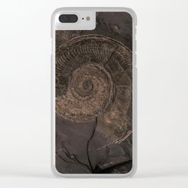 Brown rock with shells Clear iPhone Case