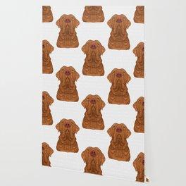 Bordeaux Mastiff Wallpaper