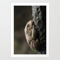 Sleep Light (whole) Art Print