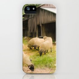 Little Sheep iPhone Case
