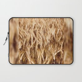 golden cereal grain ears on field Laptop Sleeve
